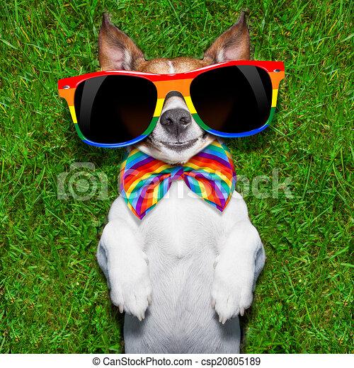homoszexuális kutyafekete lány lövellt a fekete fasz