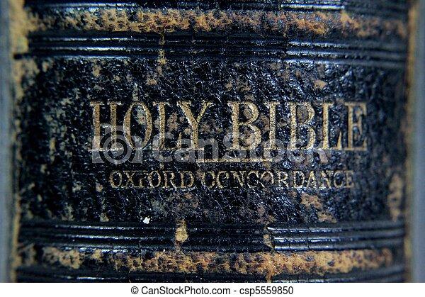 Very Holy Bible - csp5559850