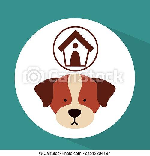 Animal House - Centro Veterinario - Veterinarian - Asunción, Paraguay |  Facebook - 6 Reviews - 2,702 Photos