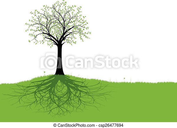 vetorial, árvore, raizes - csp26477694