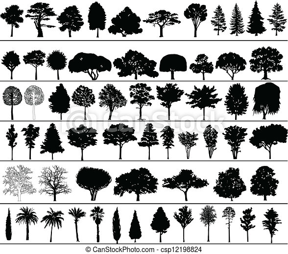 vetorial, árvores - csp12198824