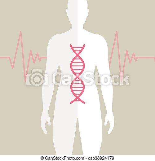vetorial, adn, human - csp38924179