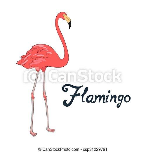 vetorial pássaro ilustração flamingo flamingo doodle