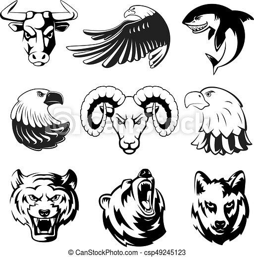 vetorial, tubarão, jogo, cabeças, pardo, grande, eagle., lobo, urso, ram., symbols., animais, labels., monocromático, ilustrações, logotipo, desporto, ou, mascotes - csp49245123