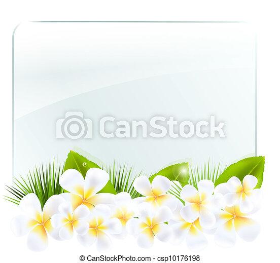 vetro, cornice, frangipani - csp10176198