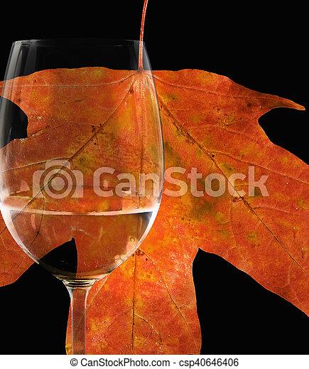 vetro, foglia, acero, vino - csp40646406