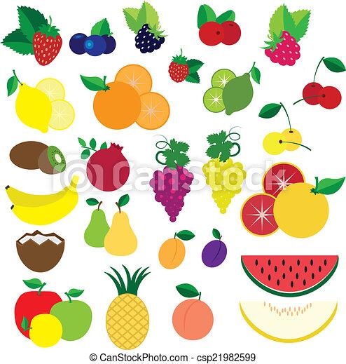 vettore, bacche, colorito, frutte - csp21982599