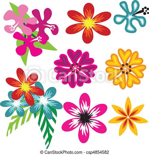 Fiori Hawaiani Disegni.Vettore Fiori Colorito Hawaiano Bello Differente Set