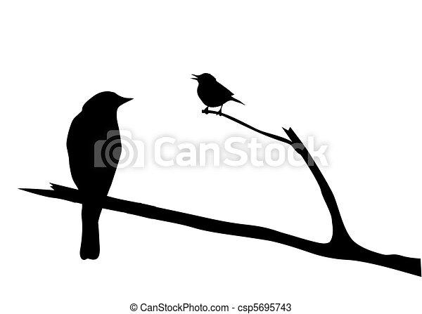 vettore, silhouette, uccello, ramo - csp5695743