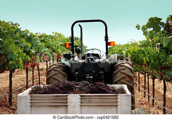 Camión en un viñedo - csp0421682