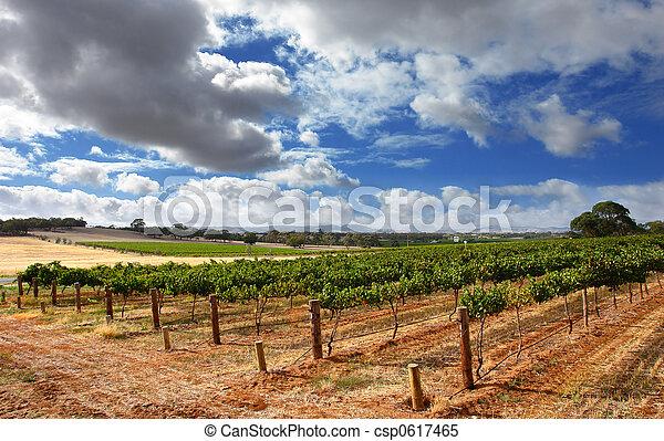 viña, nublado - csp0617465