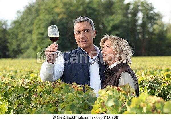 Un par de vinos degustación en el viñedo - csp8160706