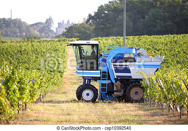 tractor de viñedos - csp10392540