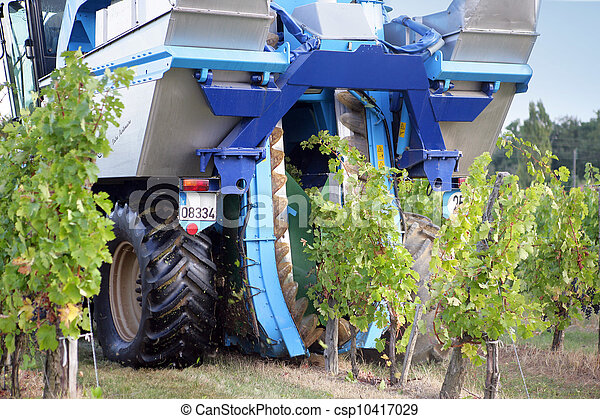 tractor de viñedos - csp10417029