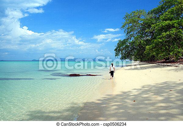 vi, andaman, 海灘 - csp0506234