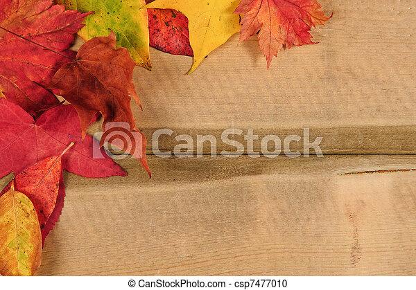 Vibrant Autumn Fall Season Leaves On Rustic Wood Background