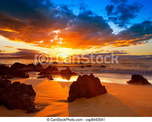 vibrant, dramatique, coucher soleil, hawaï - csp8443541