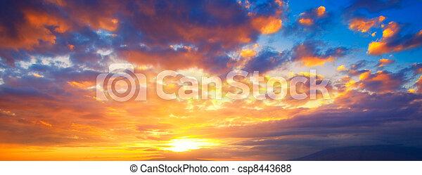vibrant, dramatique, coucher soleil, hawaï - csp8443688