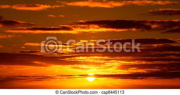 vibrant, dramatique, coucher soleil, hawaï - csp8445113
