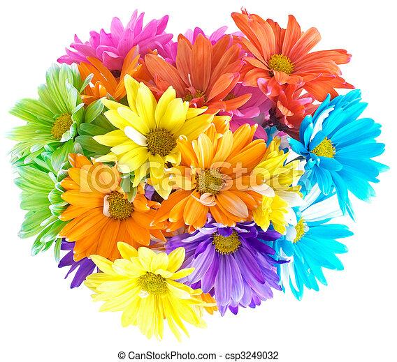 Vibrant Multicolored Daisy Bouquet - csp3249032