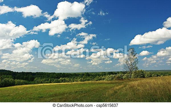 vidéki parkosít - csp5615637