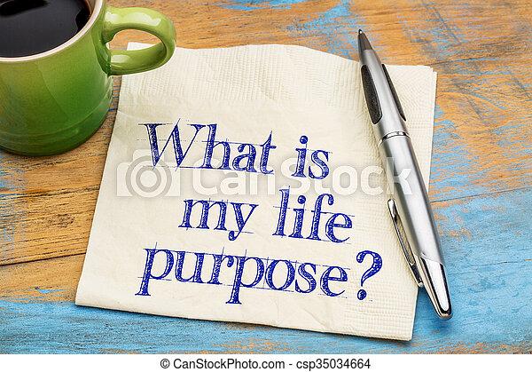 ¿Cuál es el propósito de mi vida? - csp35034664