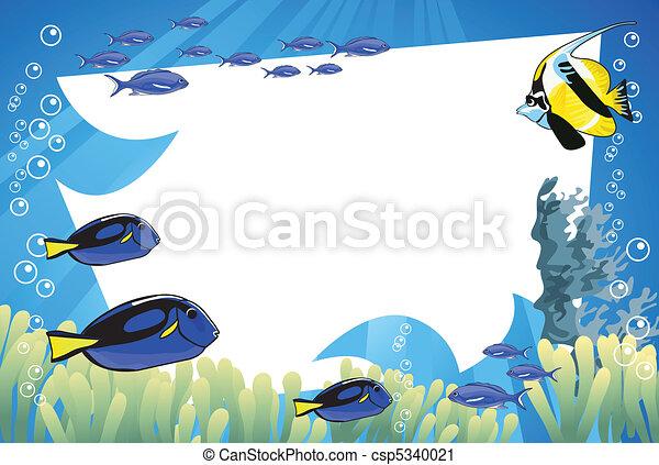 vida submarina - csp5340021