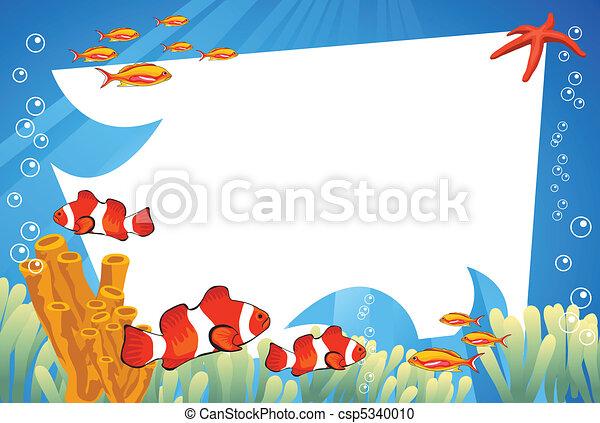 Vida submarina - csp5340010