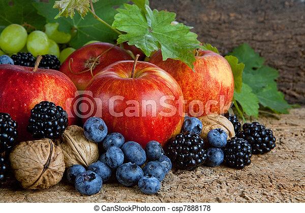 La cosecha de Acción de Gracias sigue siendo vida - csp7888178