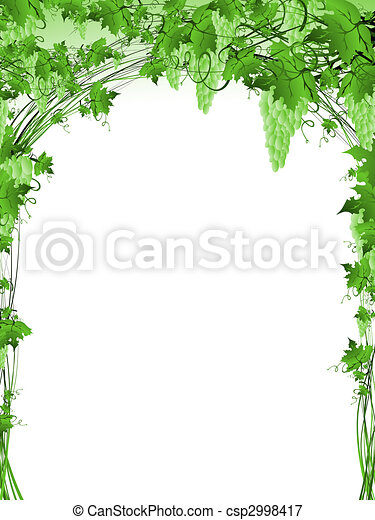 videira, quadro, uva, verde - csp2998417