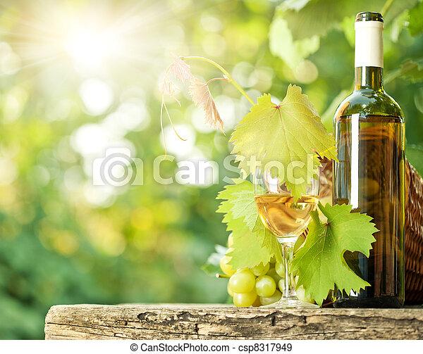 videira, vidro, uvas, vinho, branca, garrafa, grupo - csp8317949