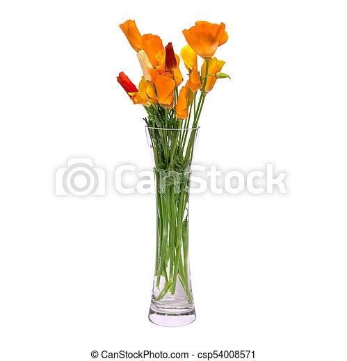 Vidrio Ramo Primavera Aislado Florero Fondo Naranja Flores