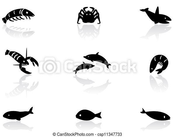 vie, 2, océan, icônes - csp11347733