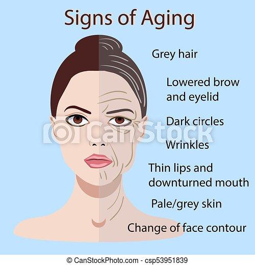 vieillissement, vieux, jeune, isolé, figure, peau, vecteur, deux signes, types - csp53951839