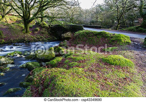 Stream y el viejo puente, Dartmoor. - csp43349690