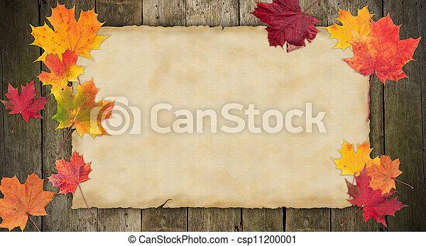 viejo, hojas, otoño, papel, blanco, arce - csp11200001