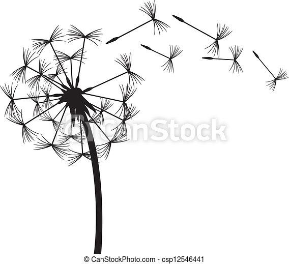 Dandelion en el viento - csp12546441