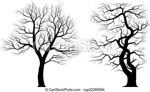 vieux, sur, arbres, arrière-plan., silhouettes, blanc - csp22289594