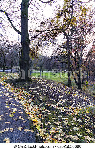 View of a Park in Autumn - csp25656690