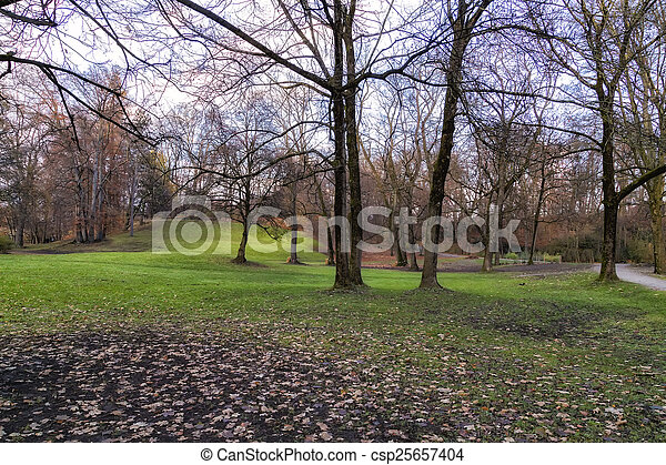 View of a Park in Autumn - csp25657404