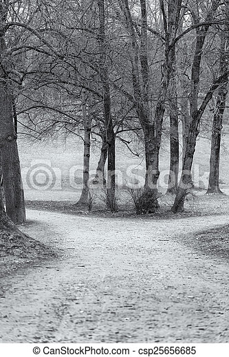 View of a Park in Winter - csp25656685
