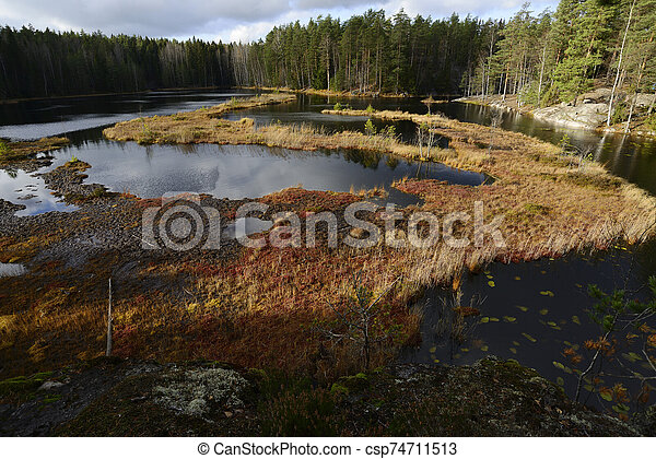view of a swampy lake in autumn - csp74711513