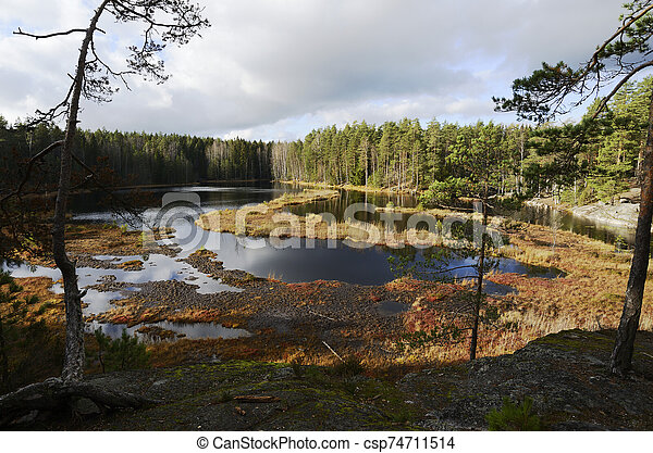 view of a swampy lake in autumn - csp74711514