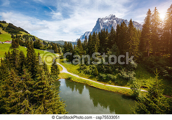 View of alpine Eiger village. Location place Swiss alps, Grindelwald, Europe. - csp75533051