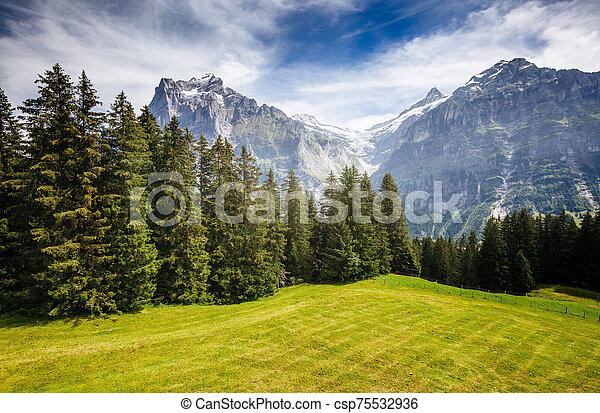 View of alpine Eiger village. Location place Swiss alps, Grindelwald, Europe. - csp75532936