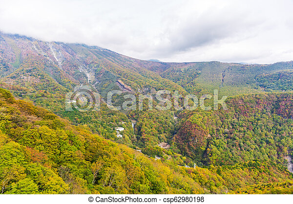View of forest in autumn season on cable car at Akechidaira plateau. Nikko. - csp62980198