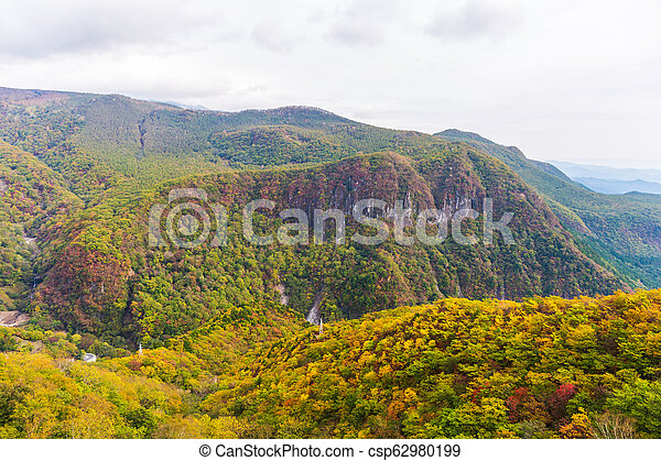 View of forest in autumn season on cable car at Akechidaira plateau. Nikko. - csp62980199
