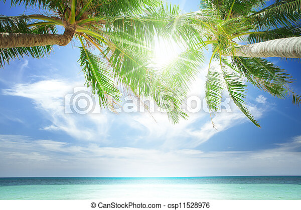 View of nice tropical  beach  with  - csp11528976