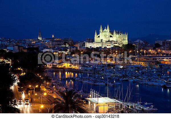 View of Palma de Mallorca with Cathedral Santa Maria - csp30143218