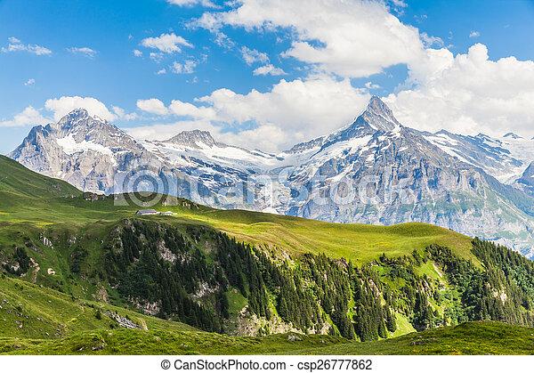 View of Schreckhorn, swiss alps - csp26777862
